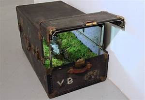 1000+ images about Steamer Trunk Repurposed on Pinterest ...