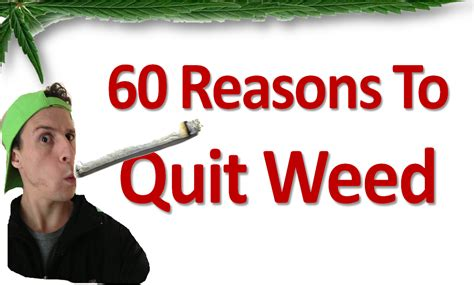 60 Reasons To Quit Weed Seb Grant