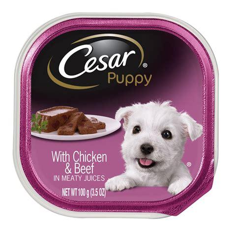 cesar puppy wet dog food ebay
