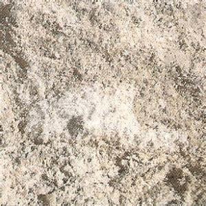 salzausbluehungen auf auf wandoberflaechen erkennen und
