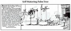 34 Palm Tree Diagram