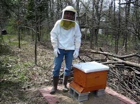 Backyard Honey Bee Hive by Backyard Beekeeping Part 1 S1 E1 Hiving The Bees
