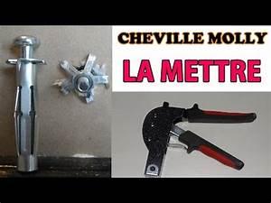 Poser Cheville Molly : comment poser une cheville nylon la r ponse est sur ~ Premium-room.com Idées de Décoration