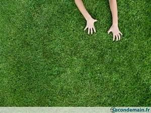 Gazon Synthétique Pas Cher : gazon pelouse synth tique d 39 occasion pas cher ~ Dailycaller-alerts.com Idées de Décoration