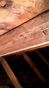 Roof Worried About Cracked Rafters In House Built 1985