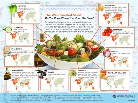 meaning of cuisine in room 167 global grocer where does your food come from