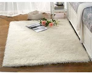 davausnet grand tapis blanc salon avec des idees With tapis blanc salon