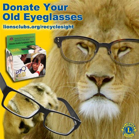 Image result for lions in spectacles