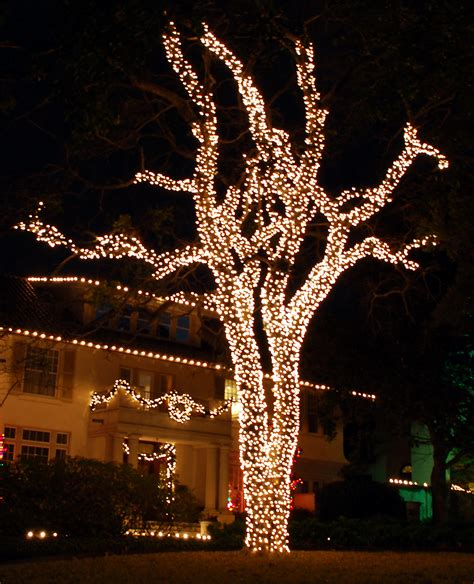 tree wrap christmas lights light installation services