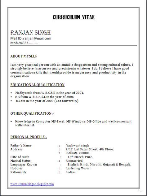 Professional Cv Format In Word by Cv Word File Format