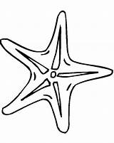 Starfish Coloring Outline Fish Drawing Line Clipart Tiny Template Clip Simple Printable Easy Animals Cliparts Presentations Websites Reports Powerpoint Projects sketch template