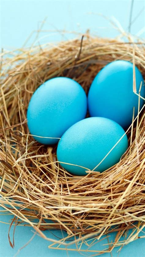 iphone easter eggs blue easter eggs in basket iphone 5 wallpaper hd free