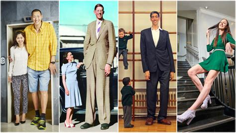 A history of record-breaking giants 100 years after the ...