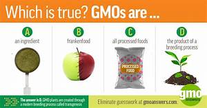 Wondering About The Safety Of Gmos