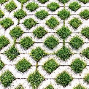 Dalle Beton Gazon Zangra Grass Pavers Gardenista 38