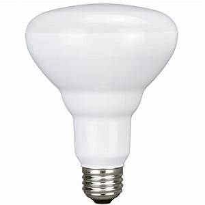 Utilitech pack w equivalent soft white br led