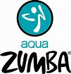Image result for aqua zumba logo