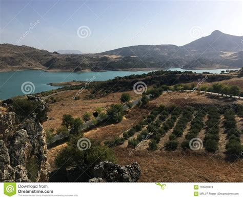 zahara andalusia landscape feria spain near andalusian spagna groves olive during rugged terrain vicino lago mountains spanish paesaggio durante olivenhaine