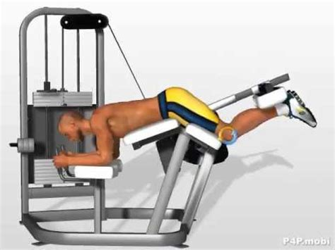 la chaise exercice musculation exercices ischio jambiers