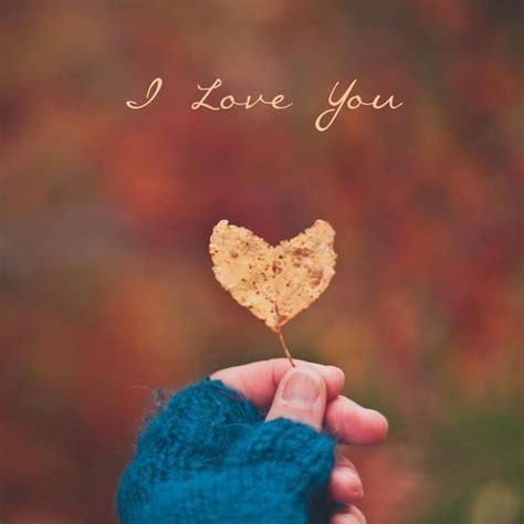 love  mobile wallpaper  whatsapp dp love romance