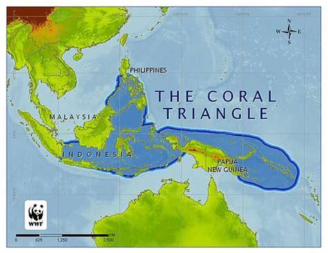 Coral Triangle Initiative