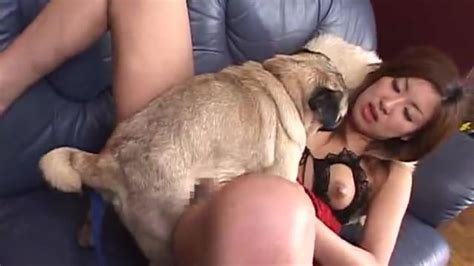 Karma Beastiality Porn Videos Free Animal Sex Zoo Sex | CLOUDY ...