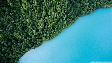 landscape, Green, Forest, Cyan, Aerial view, Split view ...