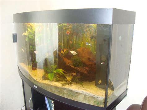 aquarium 400 litres occasion troc echange aquarium 280 litres juwel panoramique sur troc