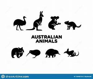 Cute Koala Baby Cartoon Background Vector Illustration