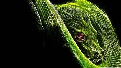 Snake Neon Wallpapersafari
