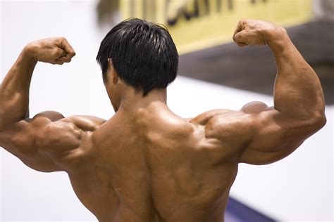 muscle groups important most train strong muscl tree