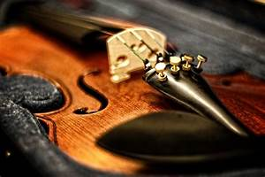 The Anatomy Of The Violin