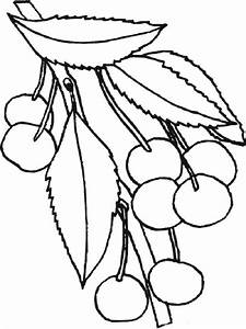 Cherry coloring pages. Download and print Cherry coloring ...