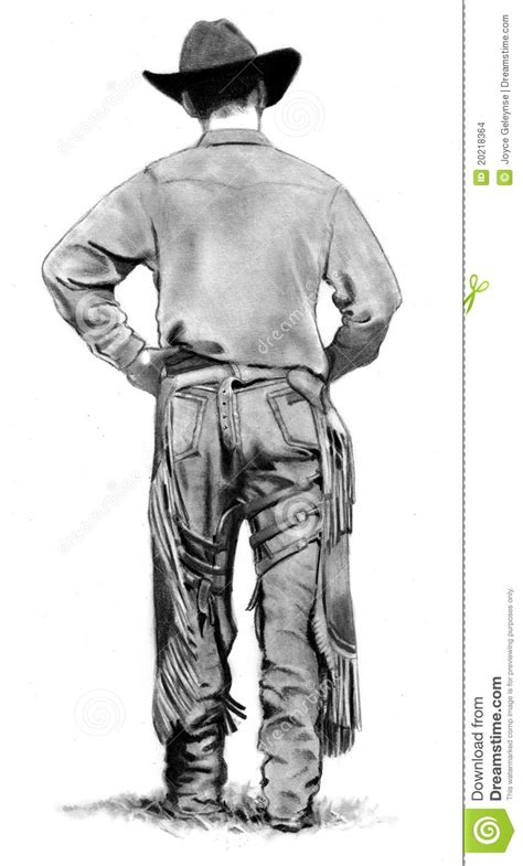 pencil drawing  cowboy  chaps stock images image