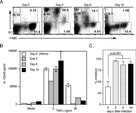 Paradoxical Anti-inflammatory Actions Of Tnf-α