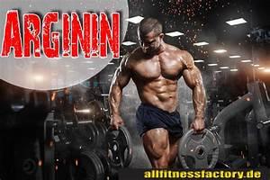 Kalorienbedarf Genau Berechnen Bodybuilding : eiwei 12 lebensmittel mit dem h chsten eiwei gehalt ~ Themetempest.com Abrechnung