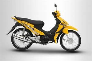 Suzuki Smash 115 Spoke  U2013 Motortrade