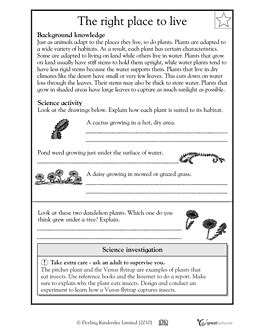 5th grade science worksheets how plants adapt to habitat places to visit science worksheets