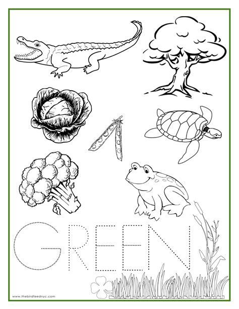green color activity sheet color activities color 778   70632c9c86de6d70000b9c7cef8a7f5f