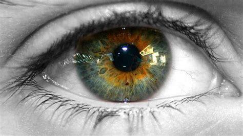 define person of color el color de tus ojos define tu personalidad estudio