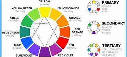 Theory Colour Rules Guide Horse Roberts Steve