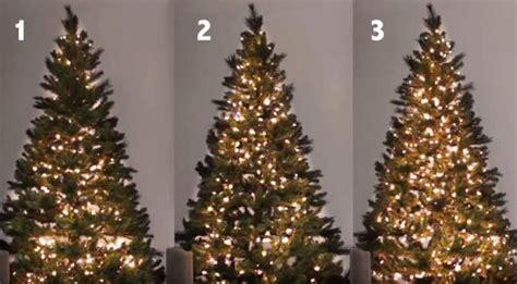 Ecco Come Mettere Le Luci Sull'albero