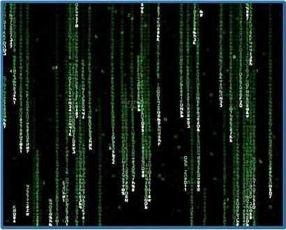 Matrix Screensaver Windows Screensavers 3d Mac Version