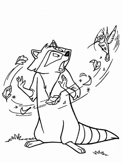 Raccoon Coloring Pages Printable Animal Colors Mycoloring