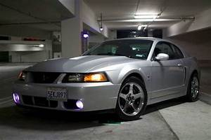 2003, Svt, cobra, mustang, terminator, used, excellent, satin silver for sale in San Diego ...