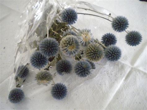 corso di fiori work in progress corso di fiori secchi