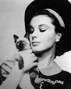 Behind Those Luminous Eyes: Vivien Leigh And Cats - A ...
