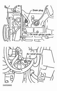 2002 Infiniti G20 Serpentine Belt Routing And Timing Belt