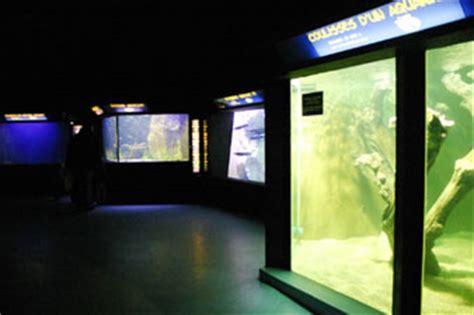l aquarium du grand lyon aquarium r 233 cifal aquarium marin aquarium eau de mer reefguardian
