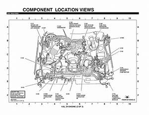 Coil Wiring Diagram Ford 4 9l With Points